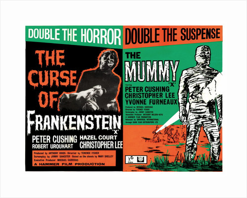 Frankenstein/The Mummy by Anonymous
