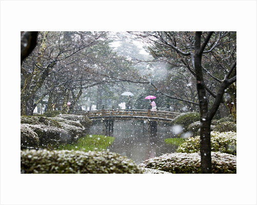 Kenrokuen Gardens, Kanazawa, Japan by Claire Takacs