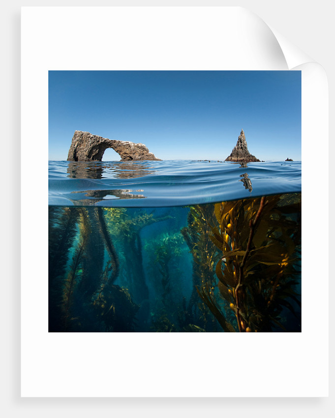 Anacapa Arch by Antonio Busiello
