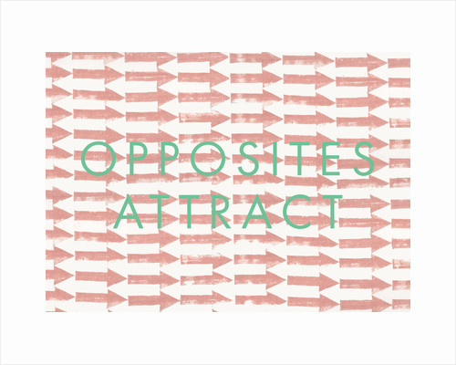 Opposites Attract by Abigail Read