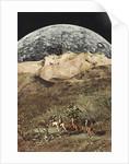 Wild Horses by Jesse Treece