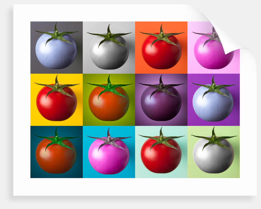 Multi coloured tomatos by Assaf Frank