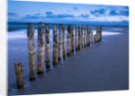 Groynes at ast head beach, West Susex coast by Assaf Frank