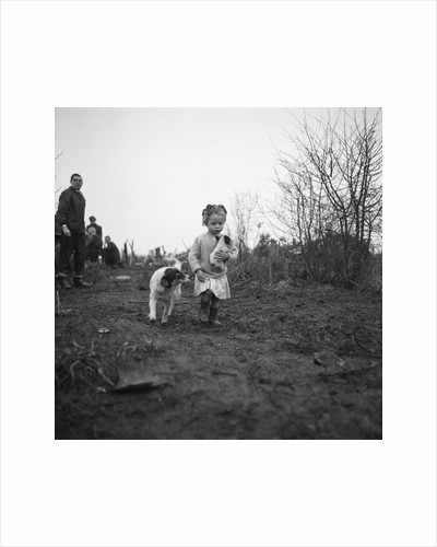 Gipsy child with a puppy, Lewes, Sussex, 1963 by Tony Boxall