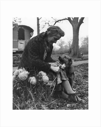 Gypsy woman with dog, 1960s by Tony Boxall