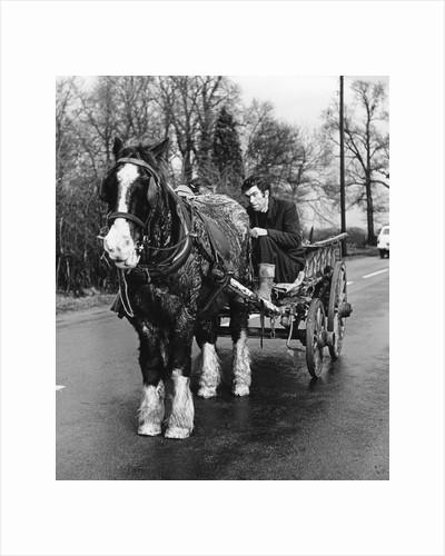 Gypsy man with horse and cart, 1960s by Tony Boxall