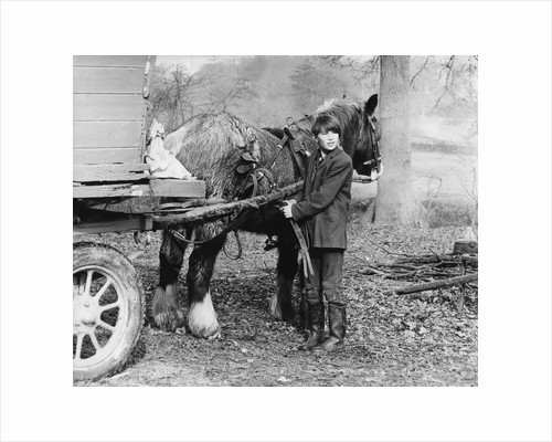 Young gypsy with a horse, 1960s by Tony Boxall