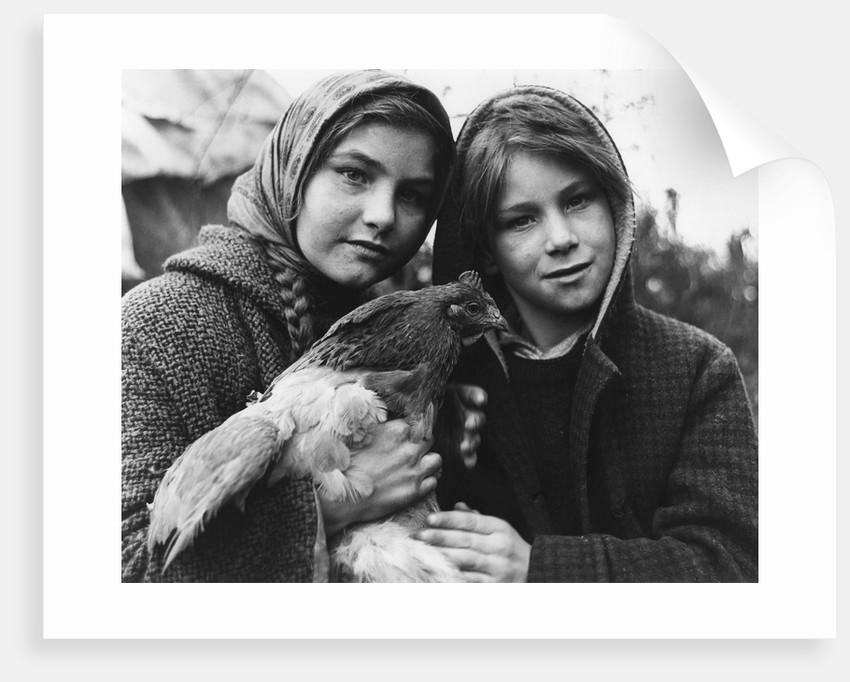 Janie and her brother, gipsy family, Charlwood, Surrey, 1964 by Tony Boxall