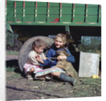 Two young gipsy girls playing with a dog, Charlwood, Newdigate area, Surrey, 1964 by Tony Boxall
