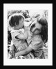 Gypsy girls, 1960s by Tony Boxall