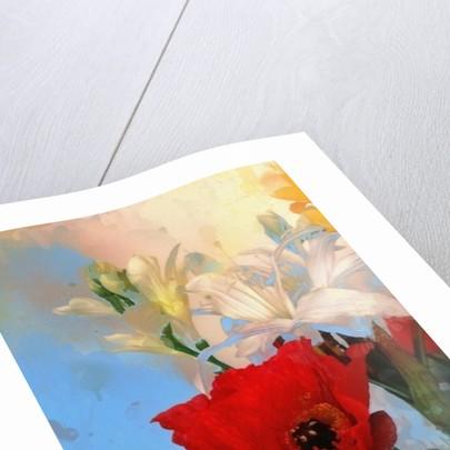 Poppy on blue by AlyZen Moonshadow