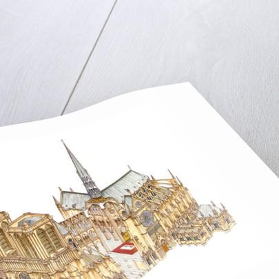 Notre-Dame Cathedral by Fernando Aznar Cenamor