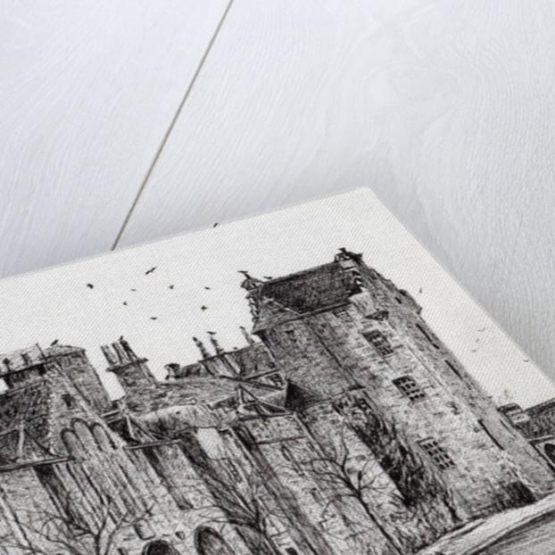 Dornoch by Vincent Alexander Booth