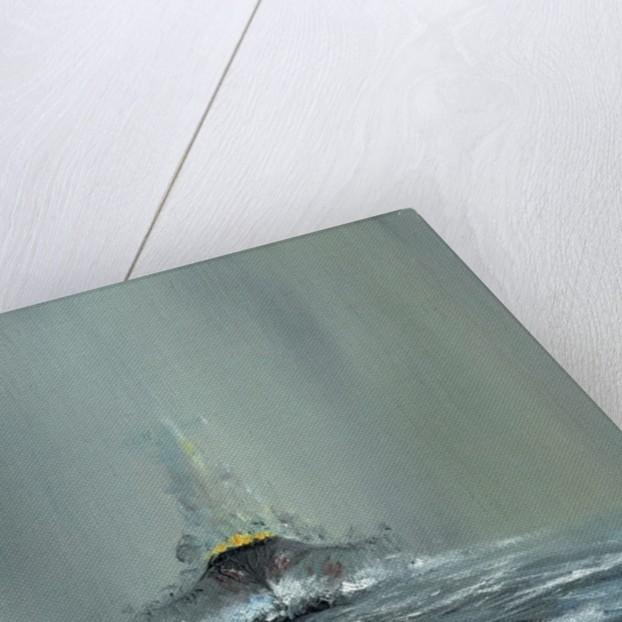 Battleship Yamato 1945 by Vincent Alexander Booth