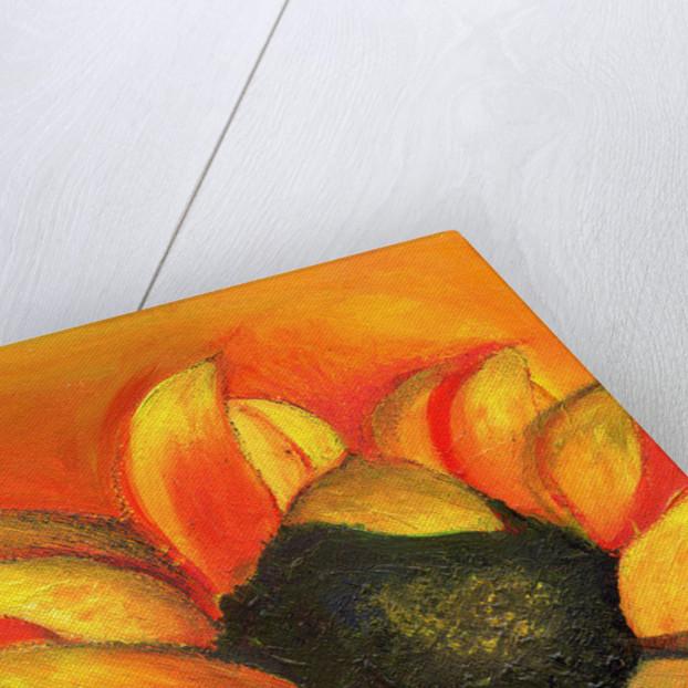September Sunflower by Nancy Moniz Charalambous