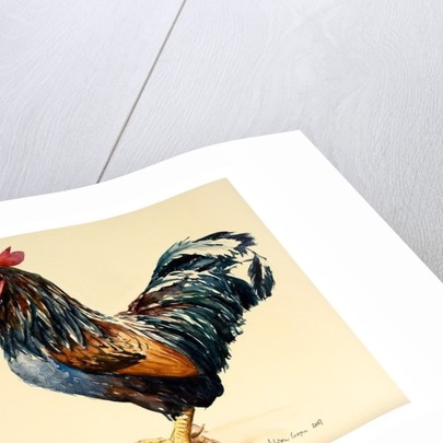 George's Cockerel by Alison Cooper