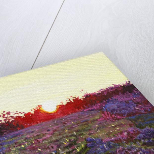 Farley sunset by Helen White