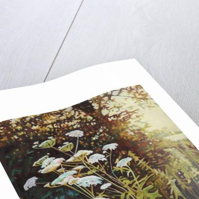 Golden hedgerows II by Helen White