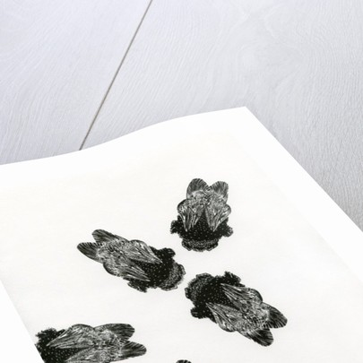 Bumblebees' Meeting by Bella Larsson
