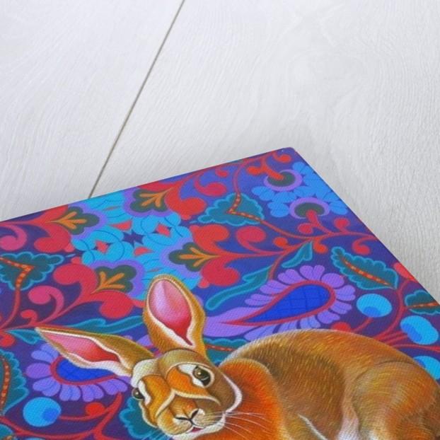Rabbit by Jane Tattersfield
