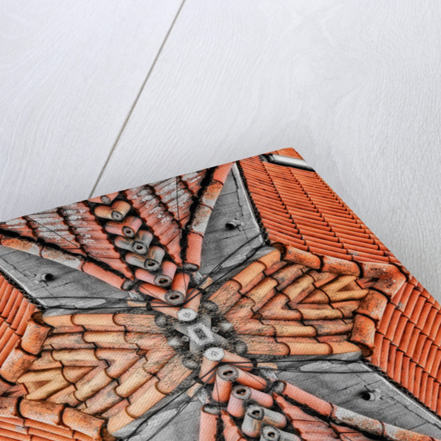 Terracotta Roofs by Ant Smith