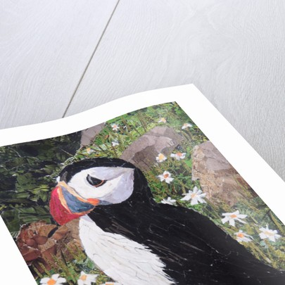 Puffin by Kirstie Adamson