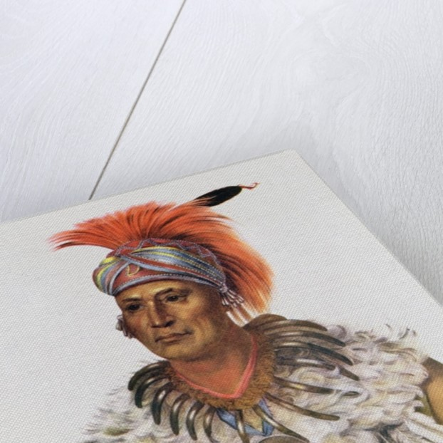 Wapella or the Prince Chief of the Foxes by Charles Bird King