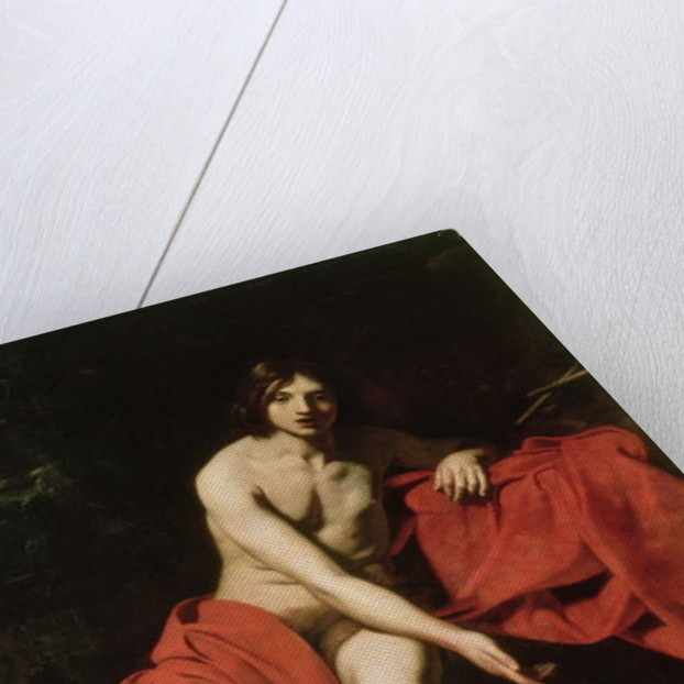 John the Baptist by Nicholas Renieri