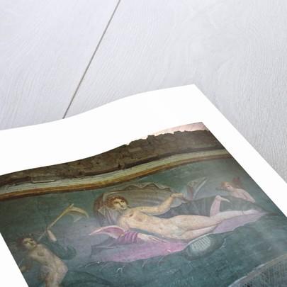 Venus Sailing the Sea by Roman