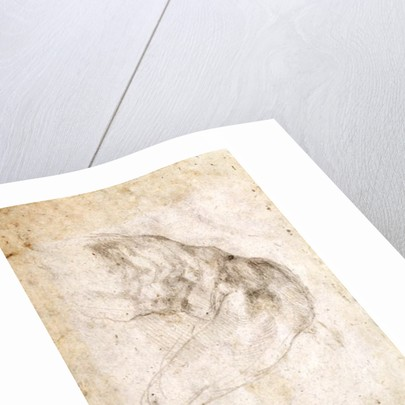 Study for The Creation of Adam (verso) by Michelangelo Buonarroti