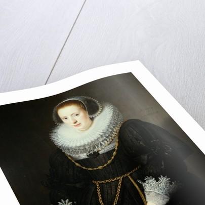 Portrait of a Girl, aged 18 by Michiel Jansz. van Miereveld