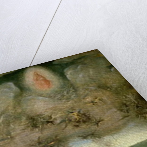 The Last Judgement (Altarpiece): Interior of Left Wing by Hieronymus Bosch