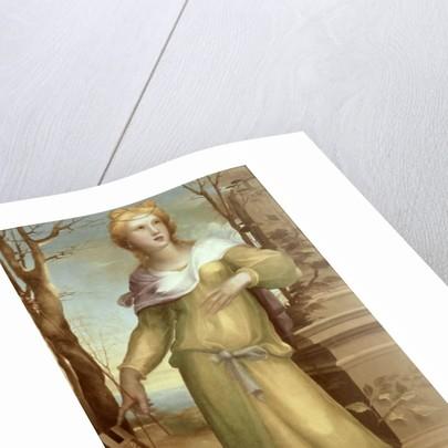 Tanaquil by Domenico Beccafumi