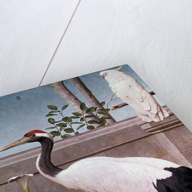 Manchurian Crane, Cockatoo and Robin by Henry Stacey Marks