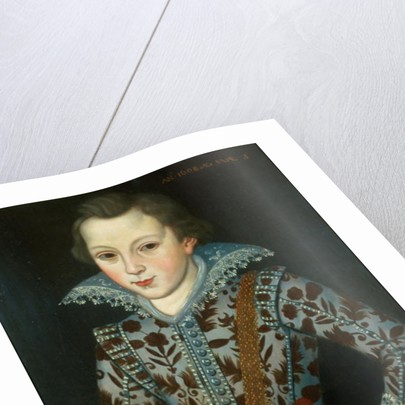 Portrait of a Young Boy, Aged Five by Robert