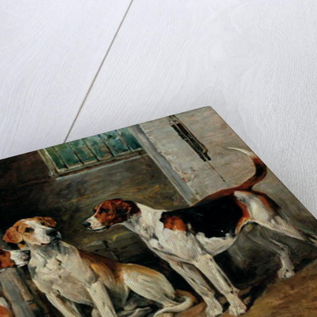 Study of Hounds by John Emms