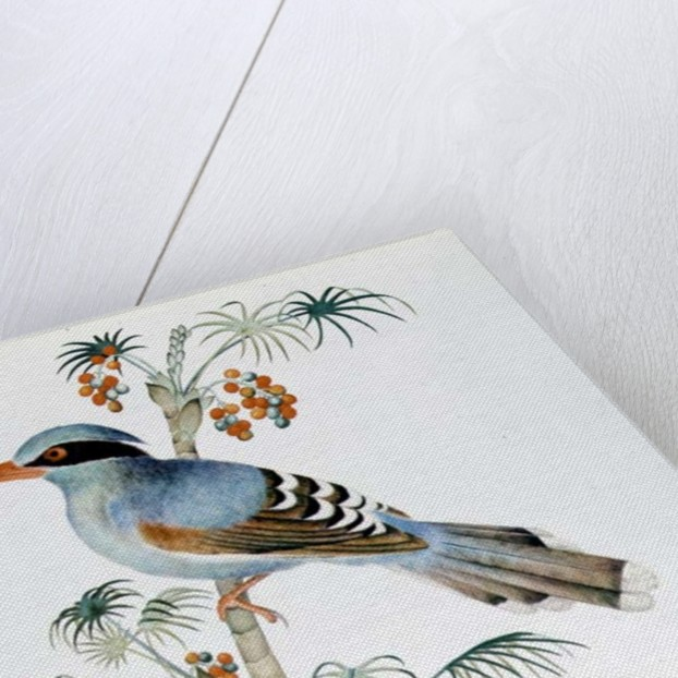 Green Magpie, Ch'ien-lung period by Qing Dynasty Chinese School