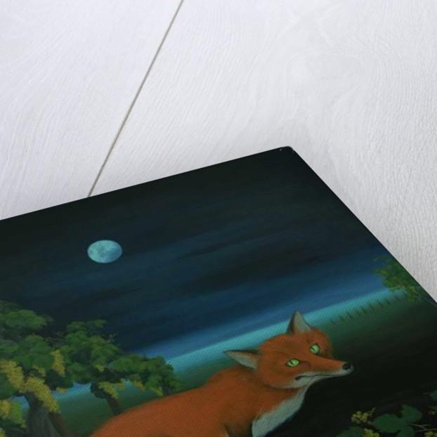Moonlighting Wixen by Magdolna Ban