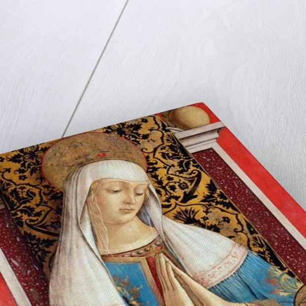The Madonna di Poggio Brette by Carlo Crivelli