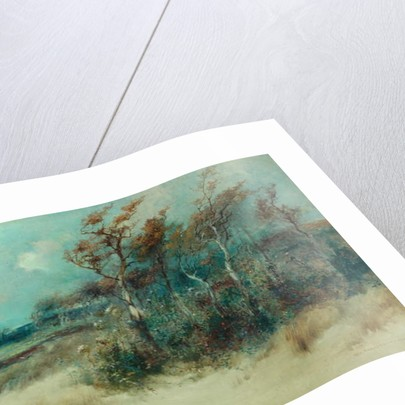 Trees in a Sandy Lane, Heysham, 1916 by William H. Parkinson