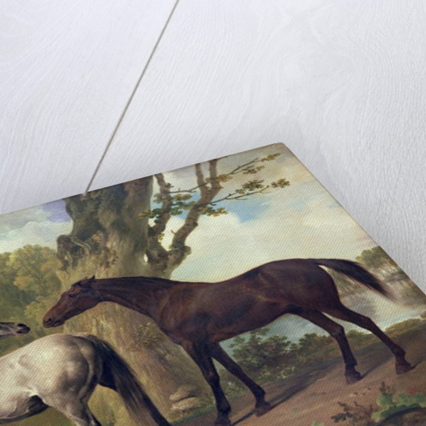 Two Horses in a landscape by George Stubbs