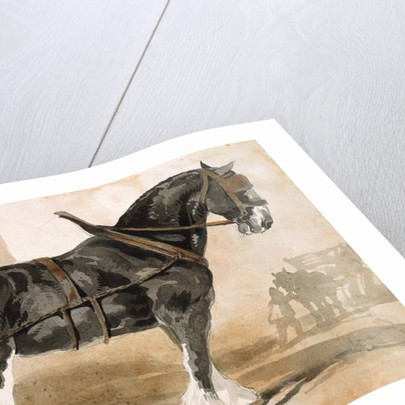 Harnessed black horse by Theodore Gericault