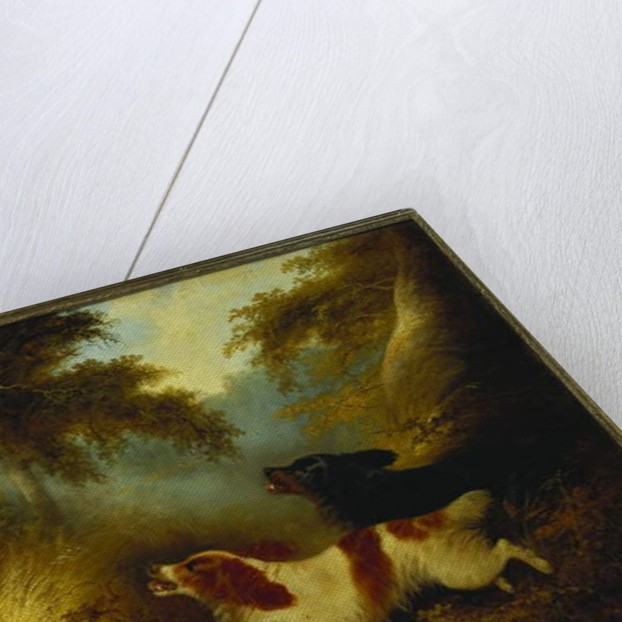 Spaniels putting up a Pheasant by George Armfield