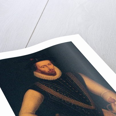 Portrait of Sir Walter Raleigh, 1595 by Marcus the Younger Gheeraerts