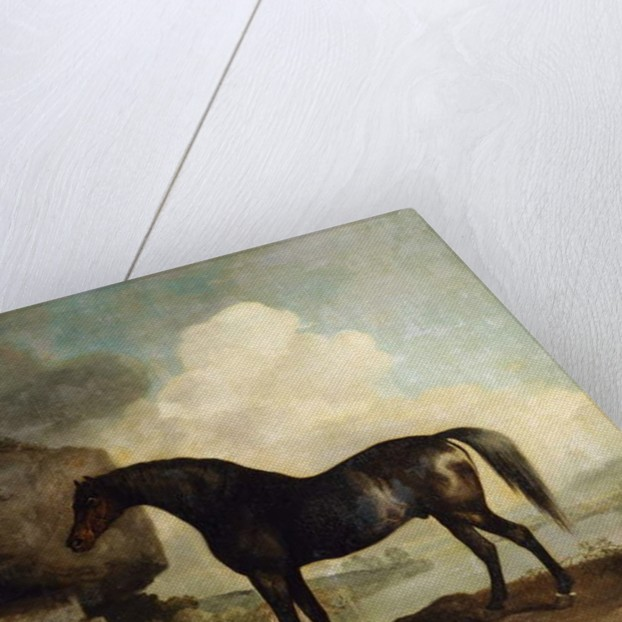 Marske' by George Stubbs