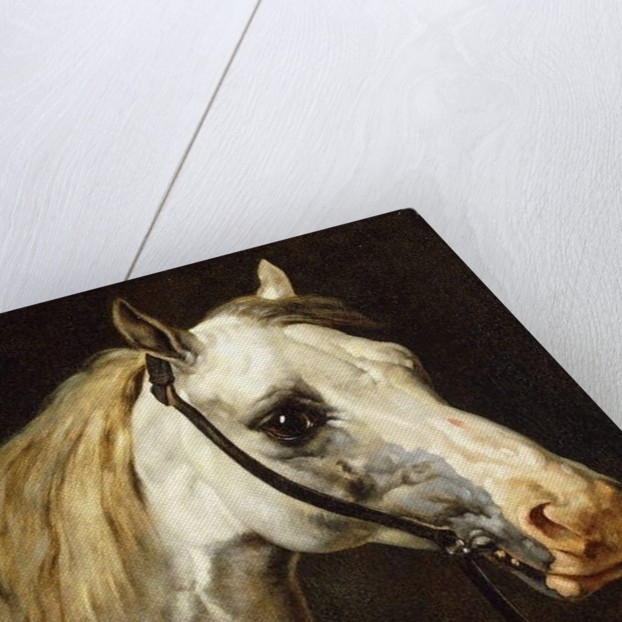 Head of a Piebald Horse by Theodore Gericault