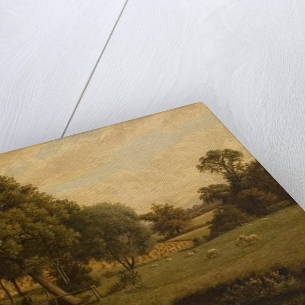 Finham Brook near Coventry, 1888 by John Anderson