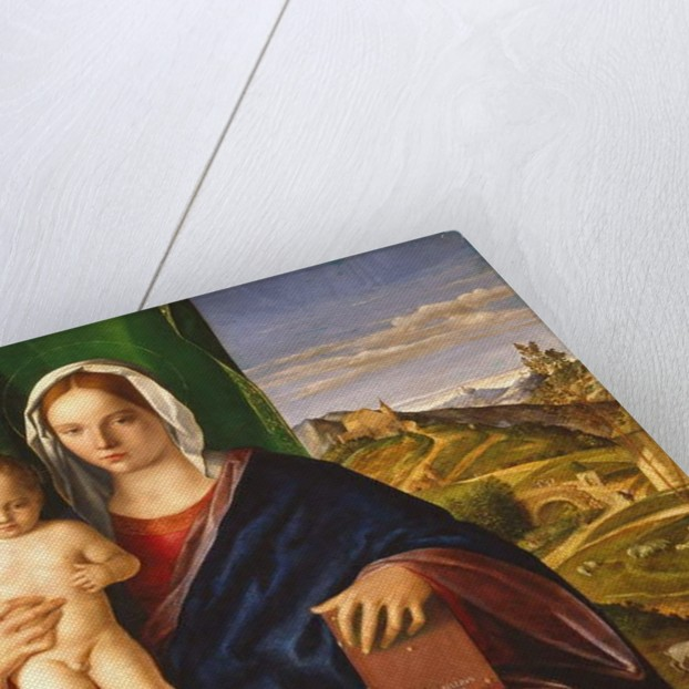 Madonna and Child, 1509 by Giovanni Bellini