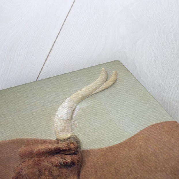 Fragment of plaster relief fresco showing a hunted bull by Minoan Minoan