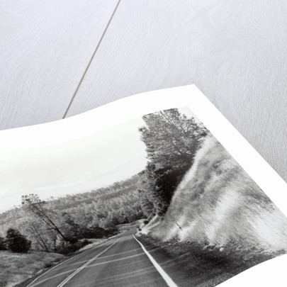 California Highway, CA, 2006 by James Galloway